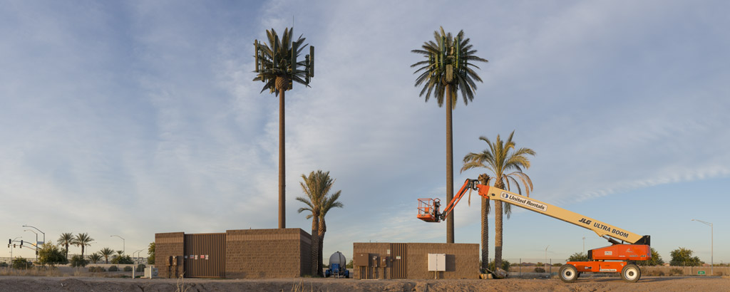 Faux Palm Cell Towers, 2013